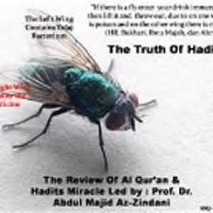 Ilustrasi Kebenaran Mukjizat Hadits Lalat