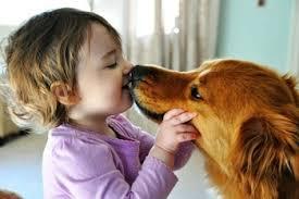 Ilustrasi Dijilat Anjing