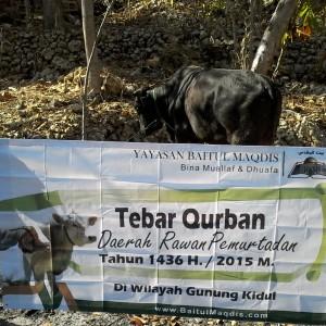 Distribusi hewan Qurban di daerah prioritas rawan pemurtadan Gunung Kidul