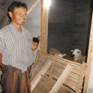 antisipasi pemurtadan lereng gunung merbabu semarang-salatiga TERNAK KAMBING Bapak Suroso dan Bapak Pahat