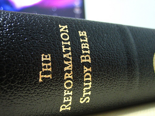 "Foto illustrasi kitab ""The Reformation Study Bible"""