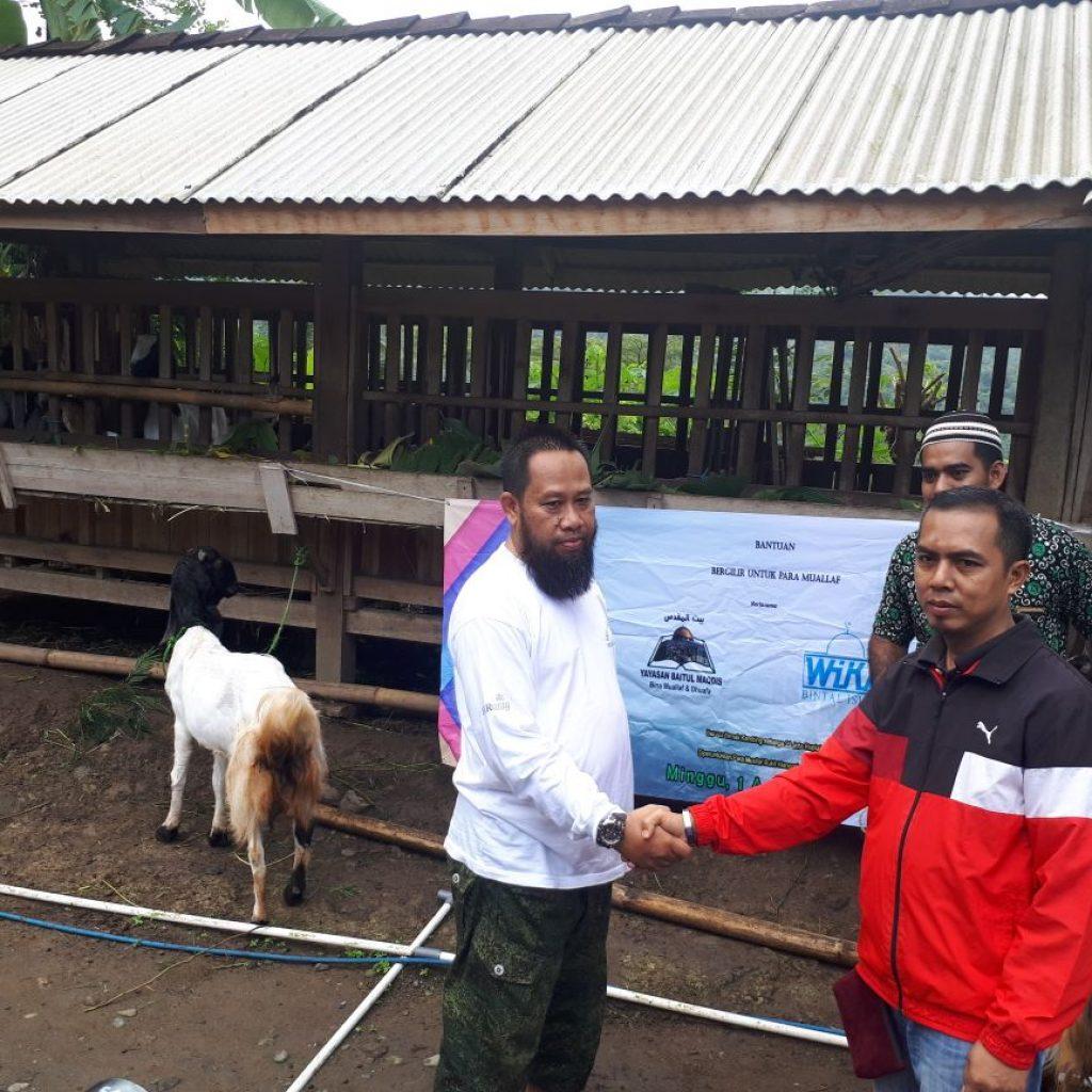 Serah Terima bantuan Kambing Bergilir dari PT Wika (Bintal Wika)