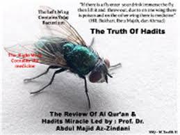Mukjizat Hadits : Fakta Ilmiah Hadits Lalat