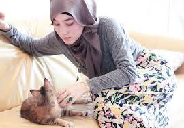 Sikap Kita dan Kedudukan Kucing Dalam Islam